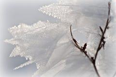 льдед кристаллов Стоковая Фотография RF
