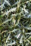 льдед кристаллов Стоковые Фотографии RF