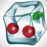 льдед кубика вишни иллюстрация штока
