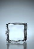 льдед кубика Стоковое Изображение RF