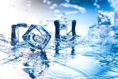 льдед кубика Стоковое фото RF