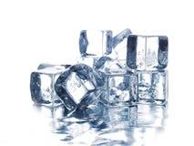 льдед кубиков Стоковое фото RF