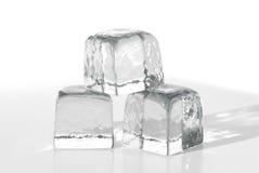 льдед кубиков Стоковые Изображения