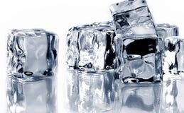 льдед кубиков Стоковые Фотографии RF