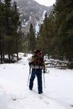 льдед Монтана альпиниста стоковые фото