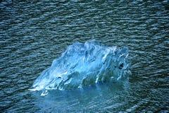 льдед сини айсберга Стоковая Фотография