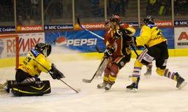 льдед хоккея Стоковая Фотография