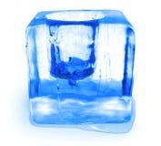 льдед чашки Стоковая Фотография RF