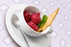 льдед ягоды cream стоковое фото
