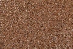 Льняное семя Стоковые Фотографии RF