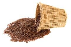 льняное семя Стоковое Фото