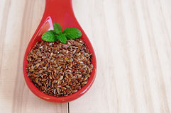 Льняные семена Брайна Здоровые seads с витаминами и минералами Стоковая Фотография RF