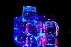 льдед кубиков Стоковая Фотография