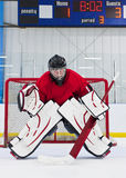 льдед хоккея вратаря Стоковое Изображение