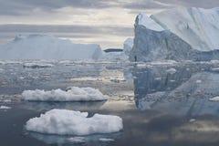 Льды и айсберги полярных областей земли Стоковое фото RF