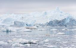 Льды и айсберги полярных областей земли Стоковая Фотография RF