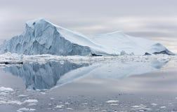 Льды и айсберги полярных областей земли Стоковые Изображения RF