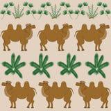 Любимая еда верблюда верблюд-терний и другие заводы пустыни Стоковая Фотография