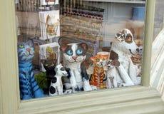 Любимчики на окне магазина Стоковое Изображение