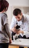 Любимчик во время медицинского назначения стоковое фото rf