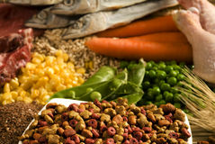 любимчик nutritive еды стоковые изображения rf