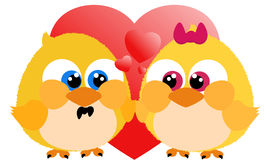 любить цыпленоков Стоковая Фотография
