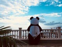Любовная история панды стоковая фотография