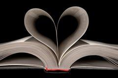 любовная история Стоковое Изображение