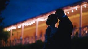 Любовники в заходе солнца освещают силуэты Россию видеоматериал