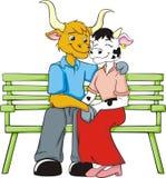 любовники коровы Стоковое фото RF