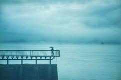 Любовники озера Стоковые Фото