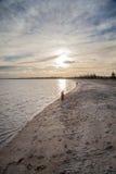 Любовники силуэта на пляже Стоковая Фотография RF