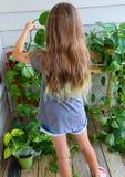 Любовник завода заботит для ее сада патио стоковое фото rf