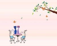 любовник кота Стоковое Изображение