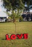 Любовные письма плюша Стоковые Изображения
