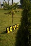 Любовные письма плюша Стоковые Фото