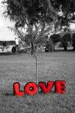 Любовные письма плюша Стоковое фото RF