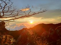 Любовь в заходе солнца стоковое изображение
