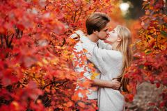 Любовь осени, пара целуя в парке падения стоковые фото
