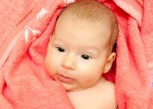 Любознательний младенец Стоковая Фотография RF