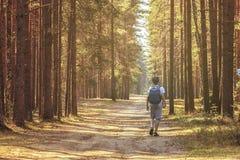 Любознательный ребенок бродяжничает через древесины позаботить о его тело и помнит Свежий воздух помогает нашему пребыванию легки стоковое изображение