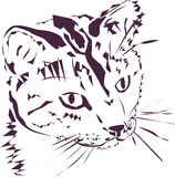 Любознательная иллюстрация кота Стоковое Изображение