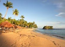 Любопытный пляж Стоковое Фото