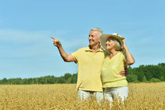 Любящие зрелые пары в поле Стоковые Фото