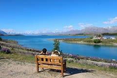 Люди восхищая озеро Tekapo, южный остров, Новую Зеландию стоковое изображение
