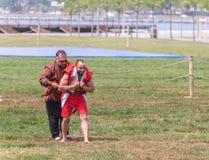 Люди выполняют guresi aba (kuroshio/wrestling) на общественном событии стоковая фотография rf
