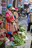 люди Вьетнам несовершеннолетия hmong цветка Стоковое Изображение