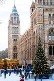 Люди в катке рождества музеем естественной истории Известный музей одно из различных мест города с holid стоковая фотография rf