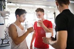 Люди в спортзале держа стекла питья протеина Стоковые Изображения