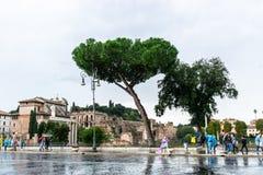 Люди дальше через улицу Dei Fori Imperiali наряду с руинами форума форума Romanum Augustus в Риме, Италии стоковые фотографии rf
